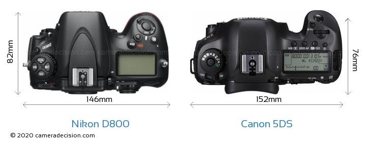 Nikon D800 vs Canon 5DS Camera Size Comparison - Top View