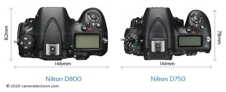 Nikon D800 vs Nikon D750 Camera Size Comparison - Top View