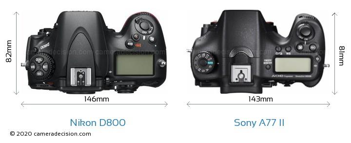 Nikon D800 vs Sony A77 II Camera Size Comparison - Top View