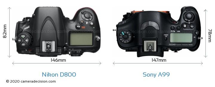 Nikon D800 vs Sony A99 Camera Size Comparison - Top View