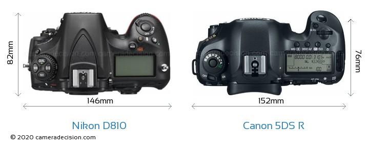 Nikon D810 vs Canon 5DS R Camera Size Comparison - Top View
