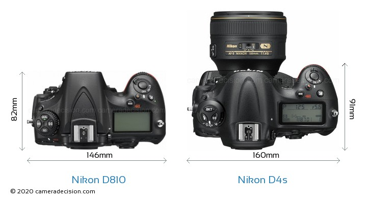 Nikon D810 vs Nikon D4s Camera Size Comparison - Top View