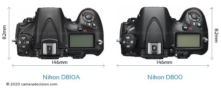 Nikon D810A vs Nikon D800 Camera Size Comparison - Top View