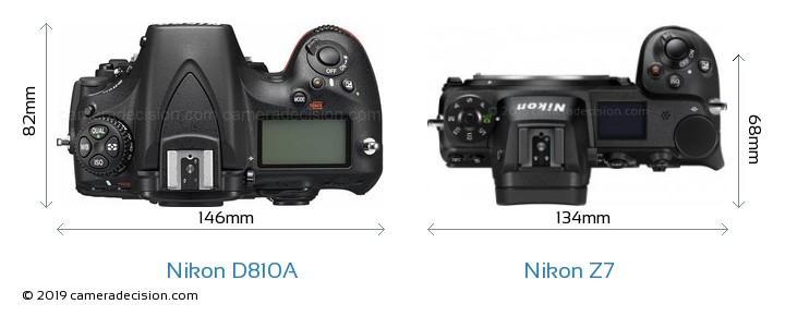 Nikon D810A vs Nikon Z7 Camera Size Comparison - Top View