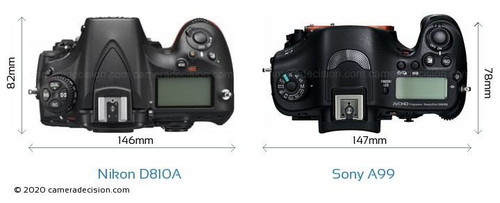 Nikon D810A vs Sony A99 Camera Size Comparison - Top View