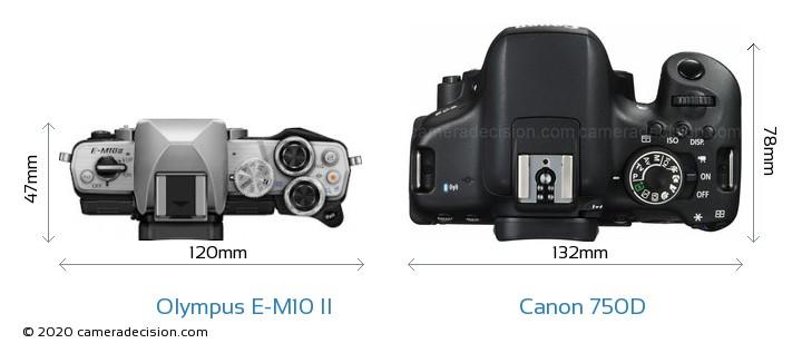 Olympus E-M10 II vs Canon 750D Camera Size Comparison - Top View