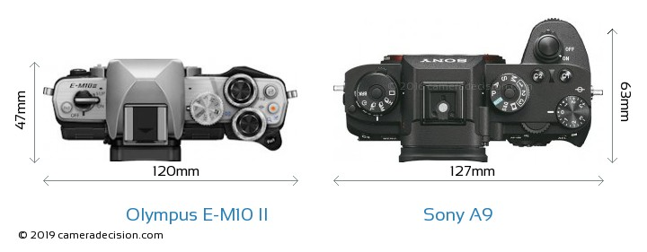 Olympus E-M10 II vs Sony A9 Camera Size Comparison - Top View