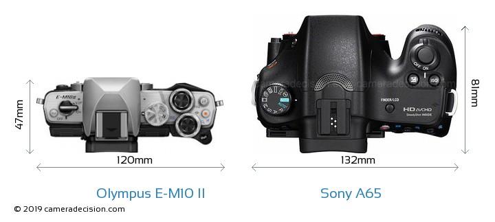 Olympus E-M10 II vs Sony A65 Camera Size Comparison - Top View