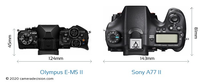 Olympus E-M5 II vs Sony A77 II Camera Size Comparison - Top View