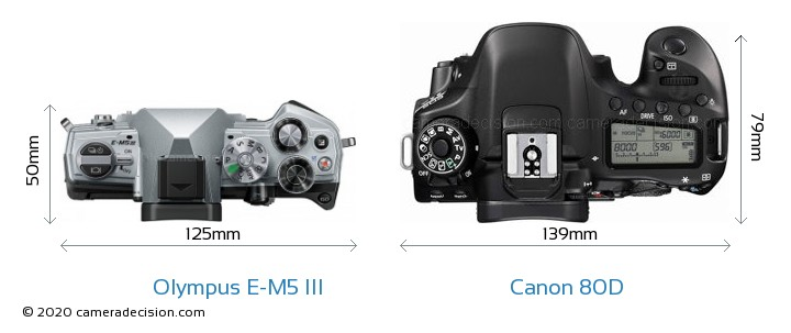Olympus E-M5 III vs Canon 80D Camera Size Comparison - Top View