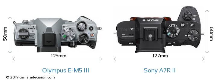 Olympus E-M5 III vs Sony A7R II Camera Size Comparison - Top View