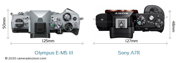 Olympus E-M5 III vs Sony A7R Camera Size Comparison - Top View
