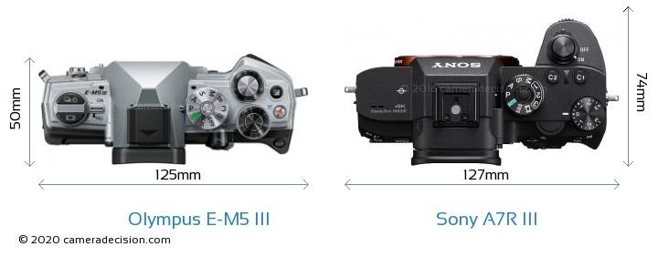 Olympus E-M5 III vs Sony A7R III Camera Size Comparison - Top View
