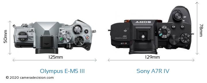 Olympus E-M5 III vs Sony A7R IV Camera Size Comparison - Top View