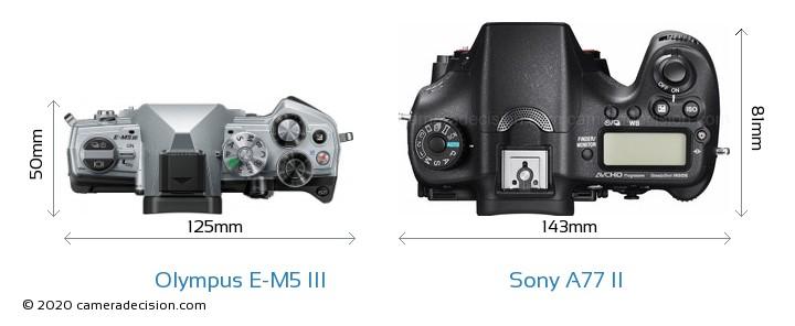 Olympus E-M5 III vs Sony A77 II Camera Size Comparison - Top View