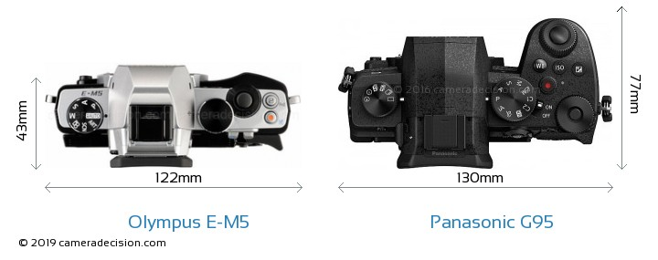 Olympus E-M5 vs Panasonic G95 Camera Size Comparison - Top View