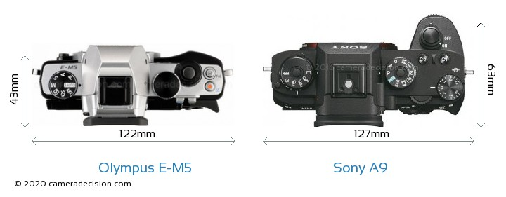 Olympus E-M5 vs Sony A9 Camera Size Comparison - Top View