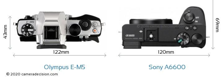 Olympus E-M5 vs Sony A6600 Camera Size Comparison - Top View