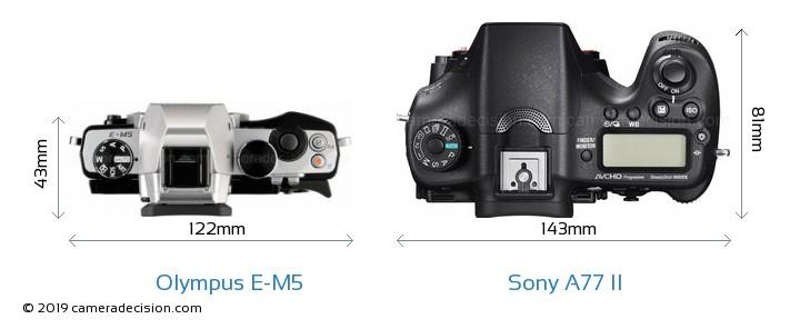 Olympus E-M5 vs Sony A77 II Camera Size Comparison - Top View