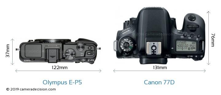 Olympus E-P5 vs Canon 77D Camera Size Comparison - Top View