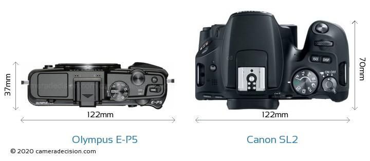 Olympus E-P5 vs Canon SL2 Camera Size Comparison - Top View