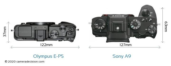 Olympus E-P5 vs Sony A9 Camera Size Comparison - Top View