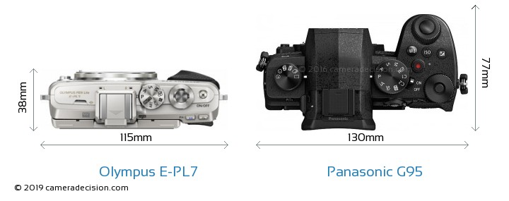 Olympus E-PL7 vs Panasonic G95 Camera Size Comparison - Top View