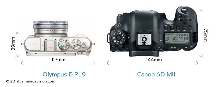 Olympus E-PL9 vs Canon 6D MII Camera Size Comparison - Top View