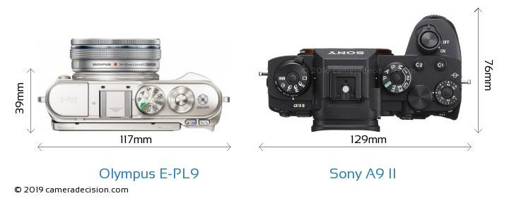 Olympus E-PL9 vs Sony A9 II Camera Size Comparison - Top View
