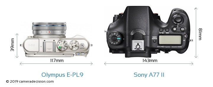 Olympus E-PL9 vs Sony A77 II Camera Size Comparison - Top View