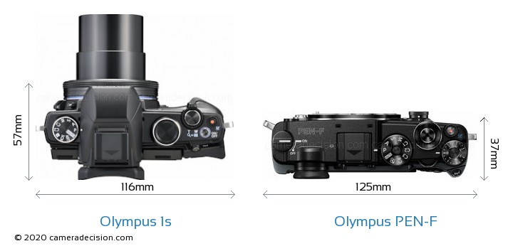 Olympus 1s vs Olympus PEN-F Camera Size Comparison - Top View