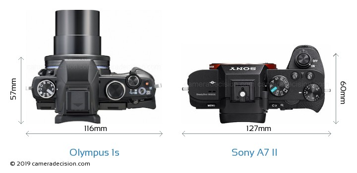 Olympus 1s vs Sony A7 II Camera Size Comparison - Top View