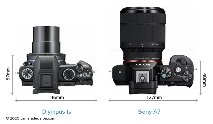 Olympus 1s vs Sony A7 Camera Size Comparison - Top View