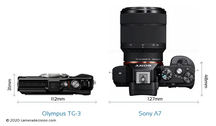 Olympus TG-3 vs Sony A7 Camera Size Comparison - Top View