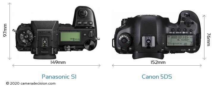 Panasonic S1 vs Canon 5DS Camera Size Comparison - Top View