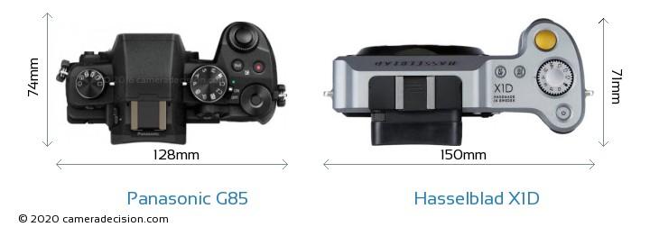 Panasonic G85 vs Hasselblad X1D Camera Size Comparison - Top View