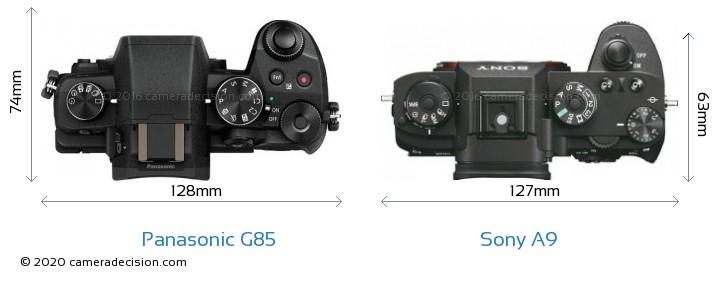Panasonic G85 vs Sony A9 Camera Size Comparison - Top View