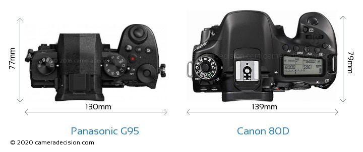 Panasonic G95 vs Canon 80D Camera Size Comparison - Top View