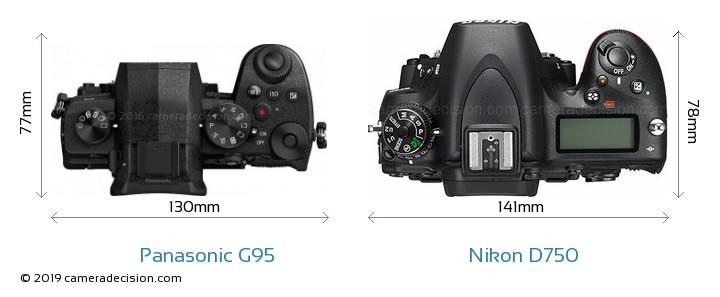Panasonic G95 vs Nikon D750 Camera Size Comparison - Top View