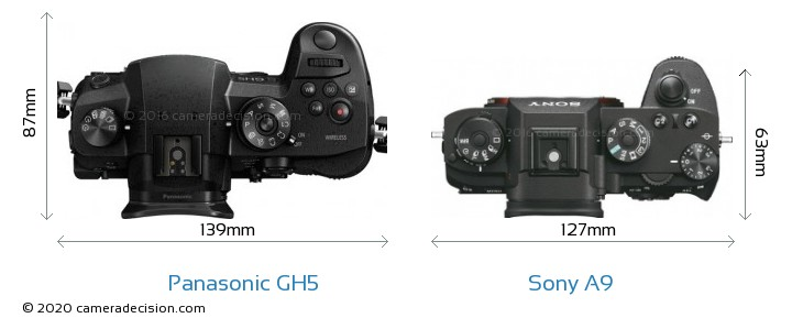 Panasonic GH5 vs Sony A9 Camera Size Comparison - Top View