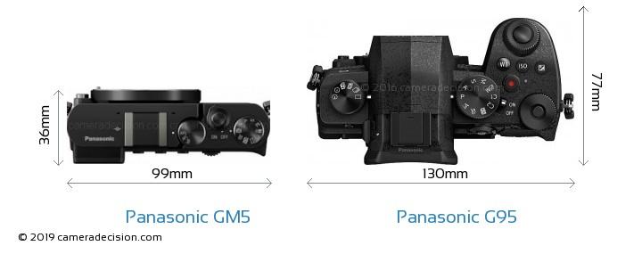 Panasonic GM5 vs Panasonic G95 Camera Size Comparison - Top View
