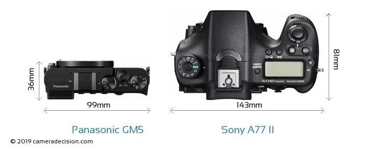 Panasonic GM5 vs Sony A77 II Camera Size Comparison - Top View