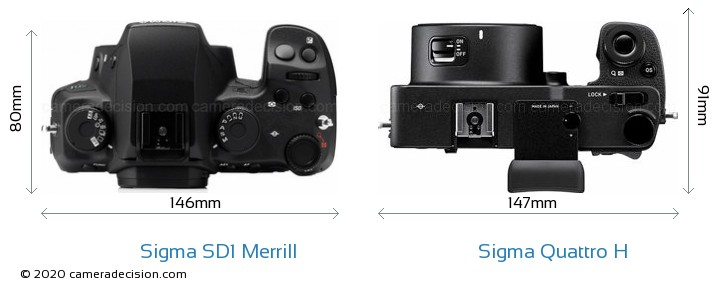 Sigma SD1 Merrill vs Sigma Quattro H Camera Size Comparison - Top View
