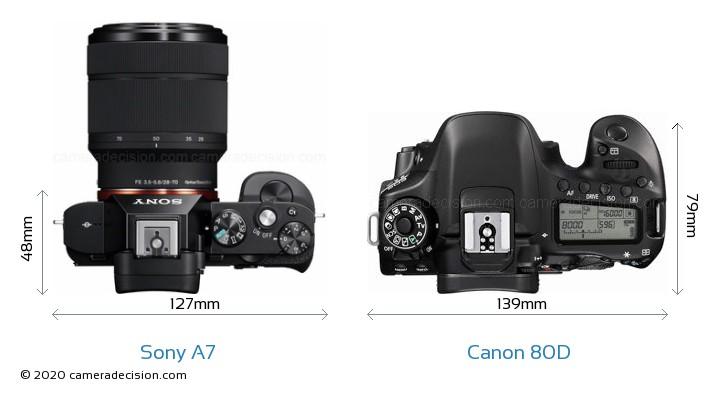 Sony A7 vs Canon 80D Camera Size Comparison - Top View