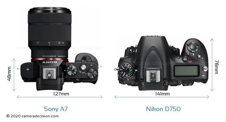 Sony A7 vs Nikon D750 Camera Size Comparison - Top View