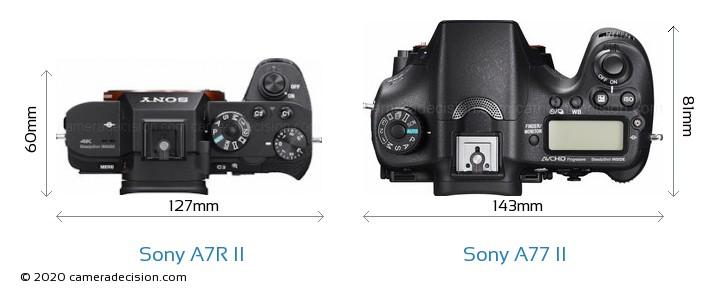 Sony A7R II vs Sony A77 II Camera Size Comparison - Top View