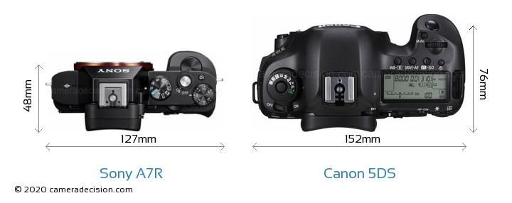Sony A7R vs Canon 5DS Camera Size Comparison - Top View