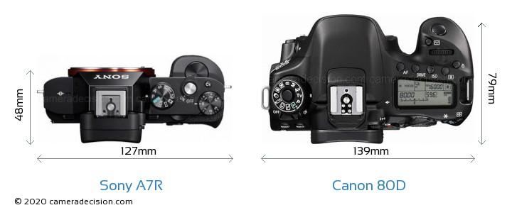 Sony A7R vs Canon 80D Camera Size Comparison - Top View