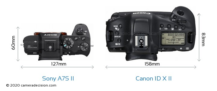 Sony A7S II vs Canon 1D X II Camera Size Comparison - Top View