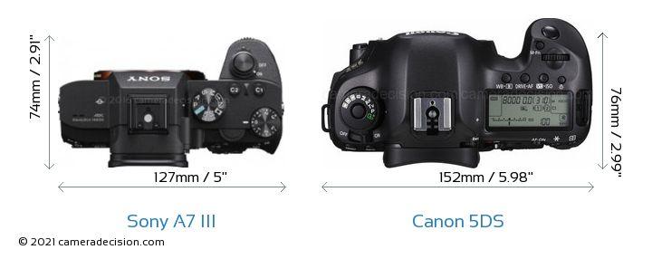 Sony A7 III vs Canon 5DS Camera Size Comparison - Top View
